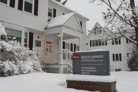 CAPS and COVID: Mental Health Services at Bates in a Pandemic