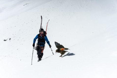 Owen Daniell '21 backcountry skiing